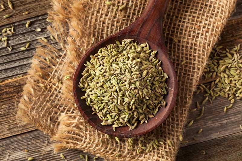 семена аниса применение в кулинарии