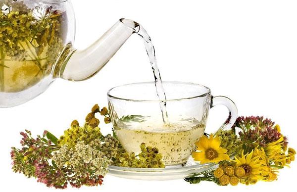 Травяные лечебные чаи - свойства и рецепты