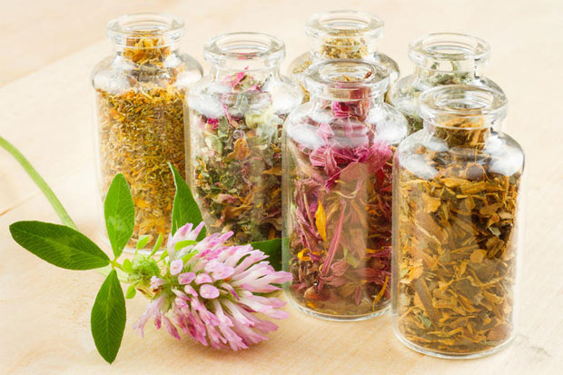 Народные и гомеопатические методы лечения женского бесплодия, Здоровье и красота в домашних условиях