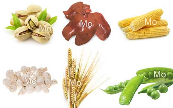 Молибден в продуктах