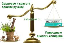 Природные аналоги аспирина