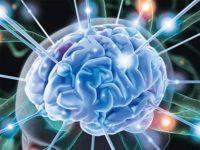 Глюкоза - топливо для головного мозга